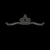 logo (8)